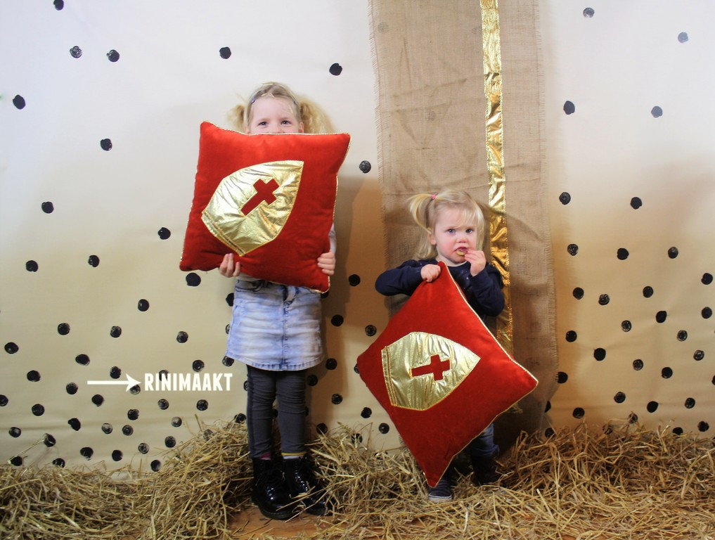 rinimaakt.nl Sinterklaas banner en kussen
