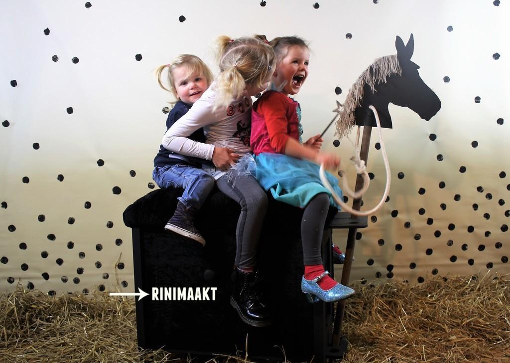rinimaakt.nl paardrijkastje horse riding box
