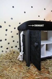 rinimaakt.nl paardrijkastje