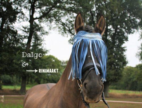 rinimaakt.nl paard zonder vliegen horse girls paardenmeisjes