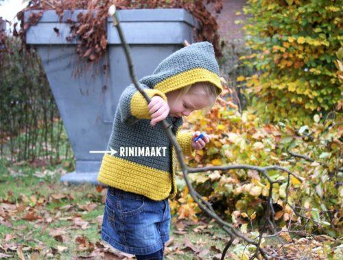 rinimaakt.nl peutervest haken in vasten crochet