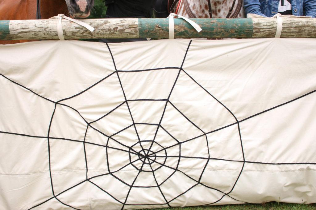 Hindernis met spookjes en spinnenweb