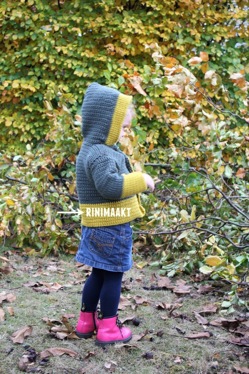 rinimaakt.nl peuter vest haken in vasten